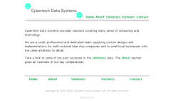 View Cybertech Data Systems Ltd site